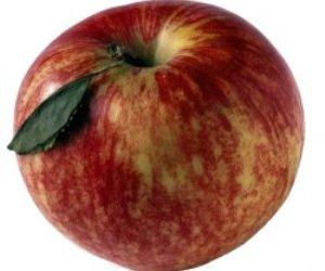 recette aux pommes sucrées